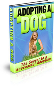 Product picture Adopting A DOG (PLR)