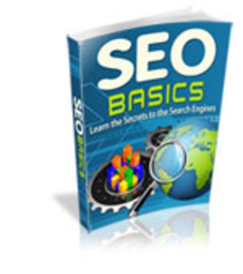 Product picture SEO Basics mrr